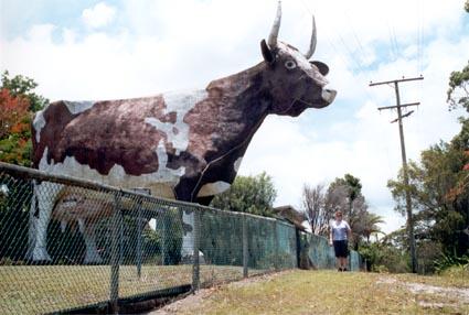 Big Cow [2]